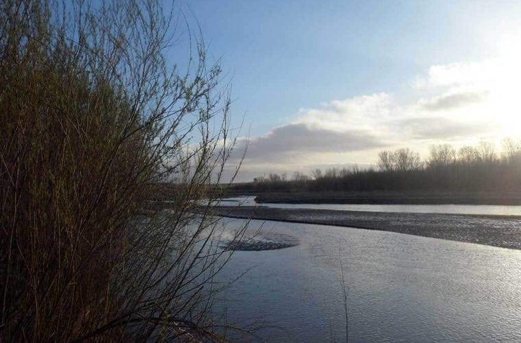 rio grande jen pelz WildEarth Guardians