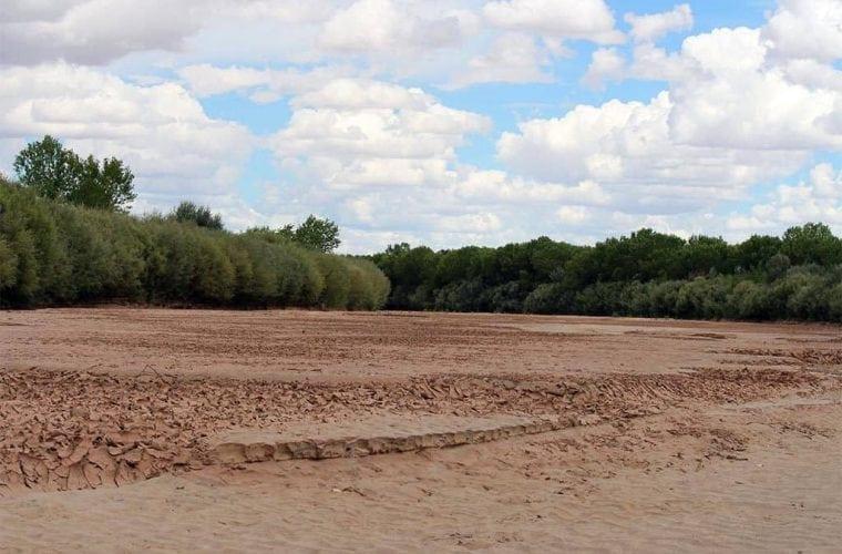 dry rio grande jen pelz wildearth guardians