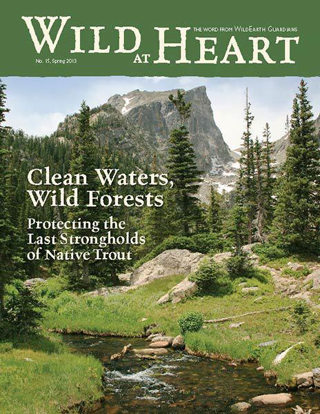 http://pdf.wildearthguardians.org/flowpaper/newsletter-15-spring-2013/