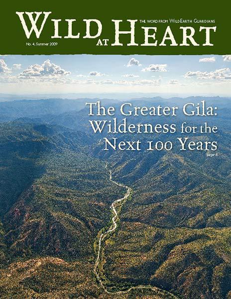 http://pdf.wildearthguardians.org/flowpaper/newsletter-04-summer-2009/