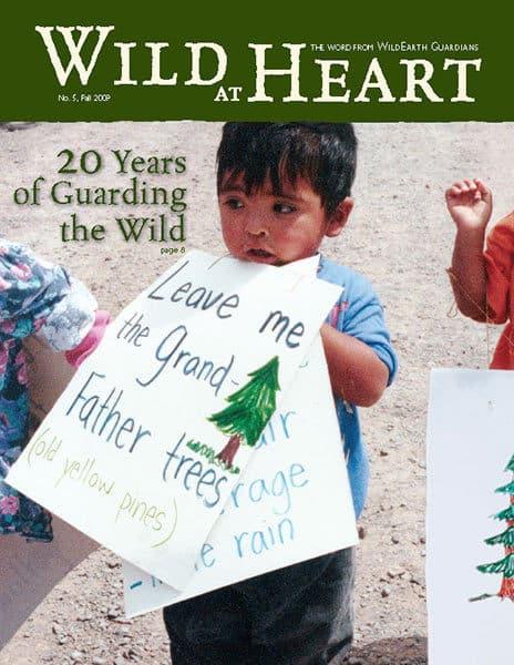 http://pdf.wildearthguardians.org/flowpaper/newsletter-05-fall-2009/