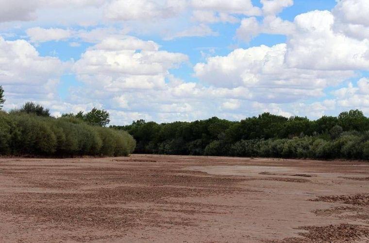dry rio at bosque del apache jen pelz wildearth guardians