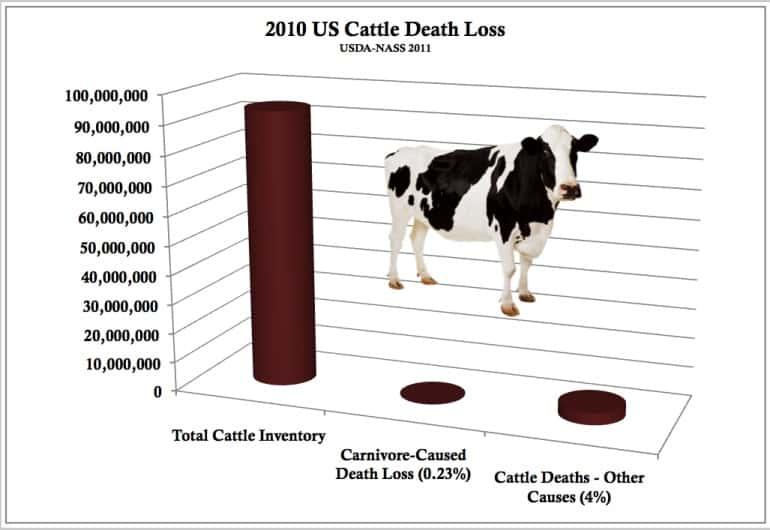 Livestock Losses