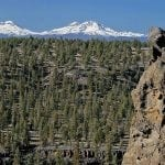 ochoco national forest usfs wildearth guardians