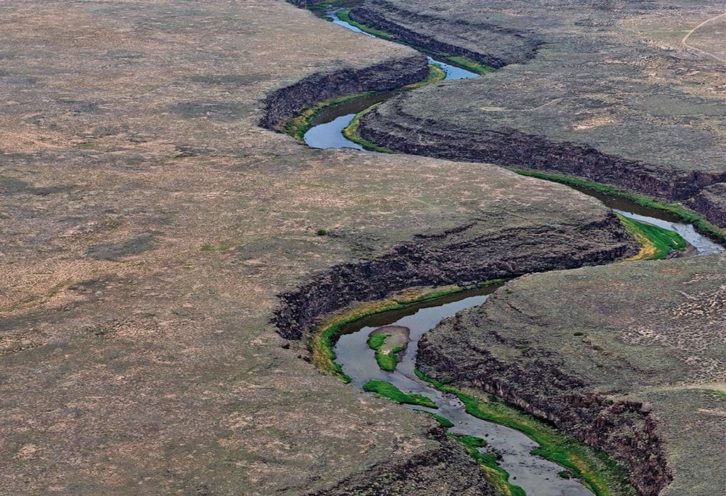 rio grande adriel heisey wildearth guardians