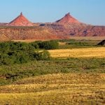 bears ears blm wildearth guardians