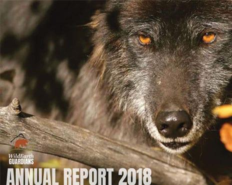 http://pdf.wildearthguardians.org/flowpaper/annual-rpt-2018-flipbk/