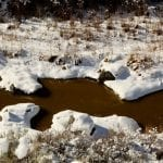 muddy rio with snow galen hecht wildearth guardians