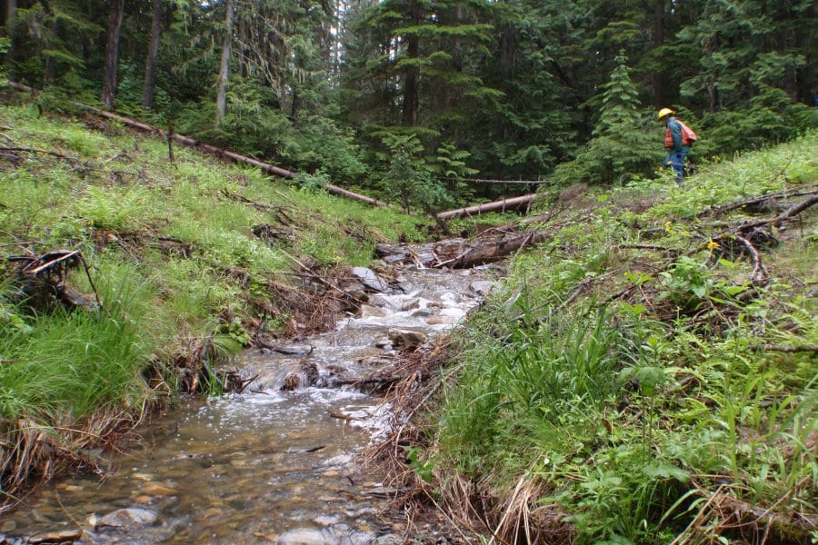 Kootenai National Forest. Adam Switalski. Wildlands CPR