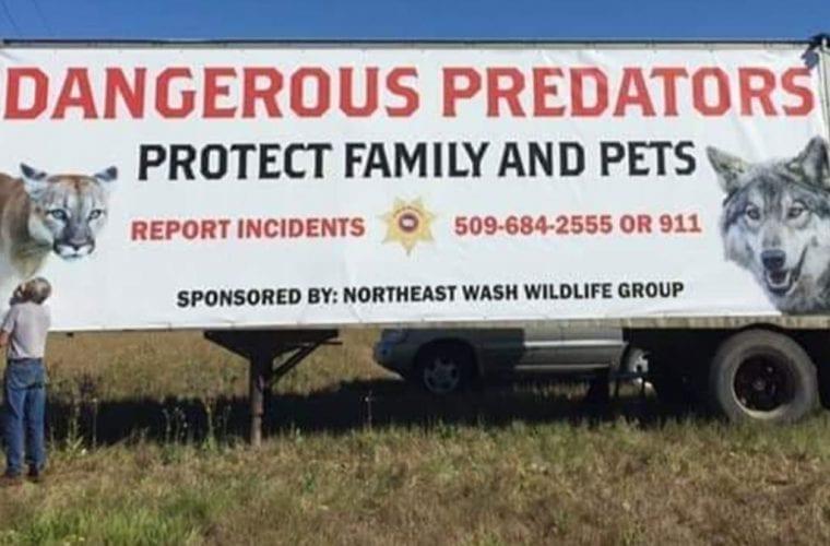 billboard wa wolves wildearth guardians