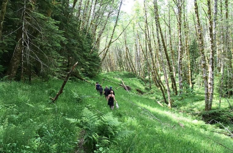 Guardians calls for wildlife and public lands restoration economic stimulus