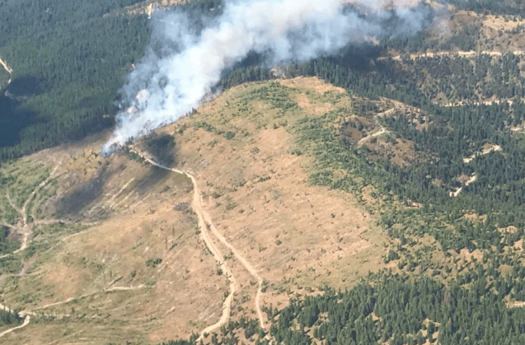 National Forest Roads and Wildfire