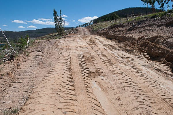 Logging and roadbuilding on national forest