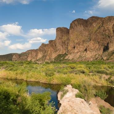 Salt River Arizona WildEarth Guardians