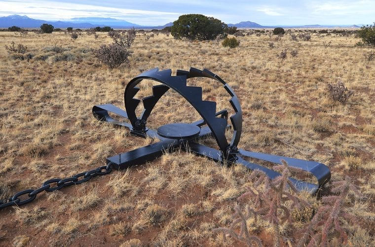It's time for New Mexico trapping laws to catch up