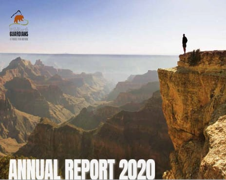 https://pdf.wildearthguardians.org/flowpaper/annual-rpt-2020/index.html