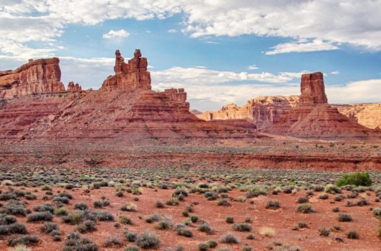 Restore Bears Ears and Grand Staircase-Escalante