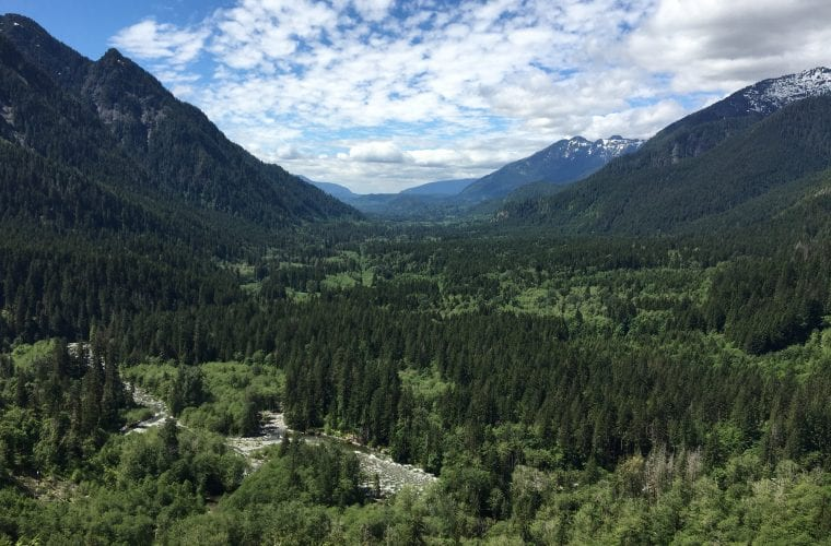 Restoring national forest lands and waters