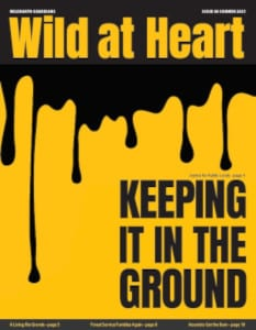 Wild at Heart #40 cover