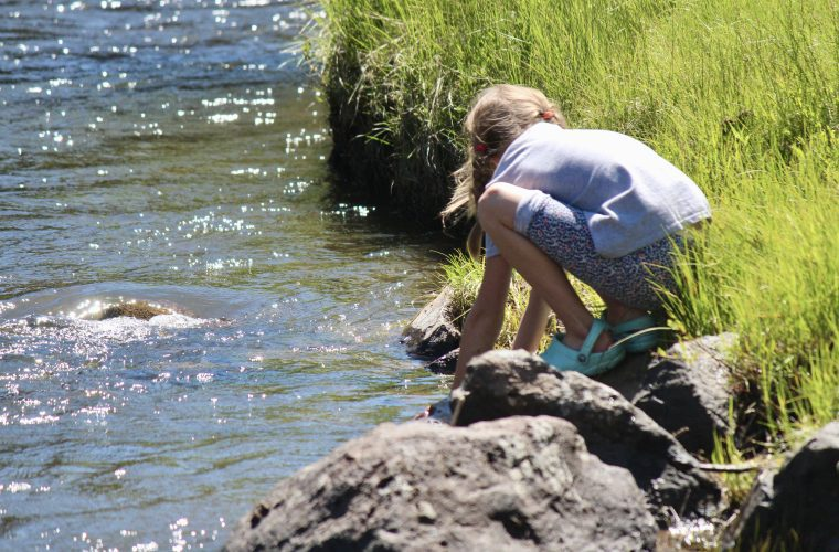 Celebrate the 49th anniversary of the Clean Water Act
